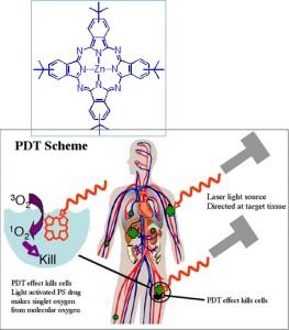 27-11-13- Seminario Bioingeniería