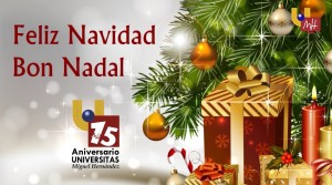 20-12-13-UMH Televisión
