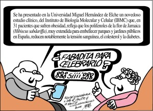 31-07-14-forges