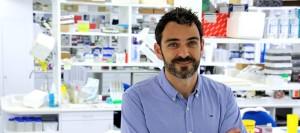Rubén Francés Guarinós professor Immunologia Departament Medicina Clínica UMH imatge