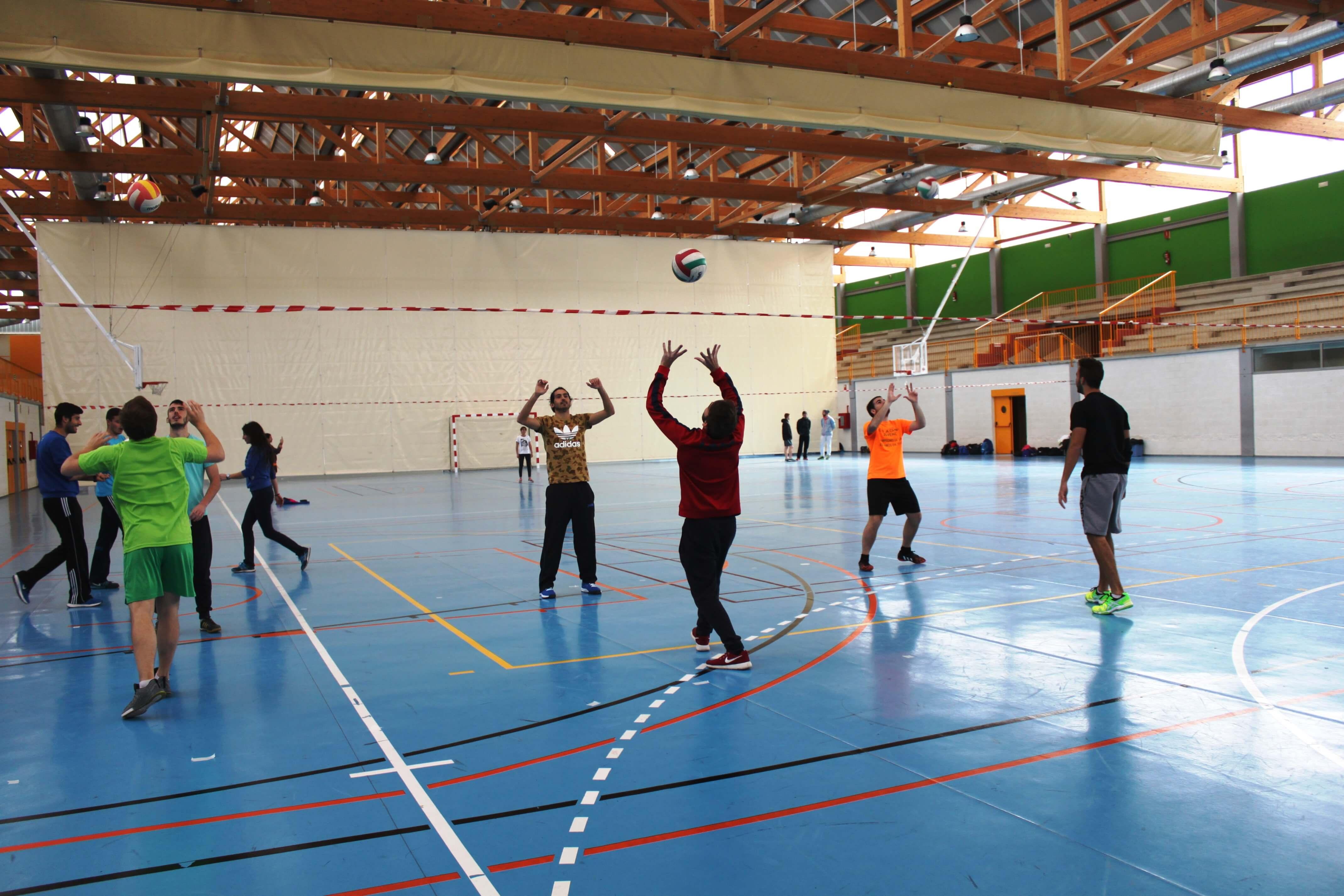 facultad de ciencias de la actividad fisica y el deporte:
