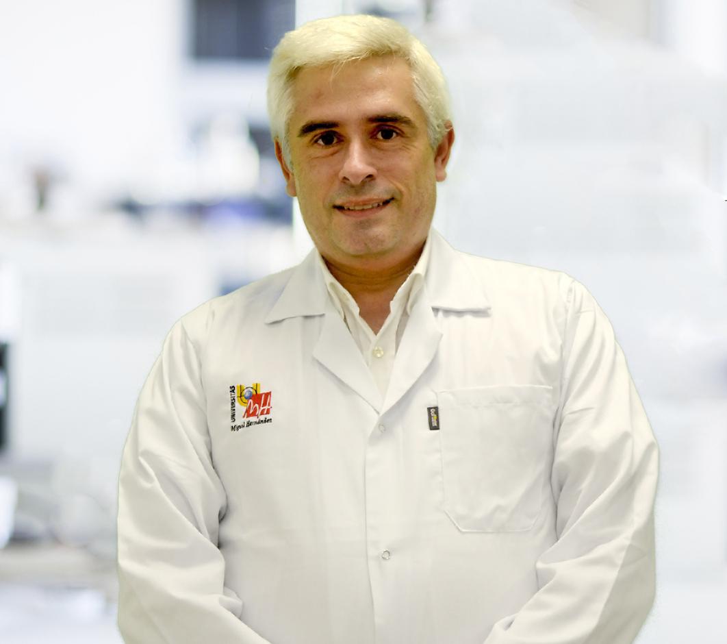 Vicente Arrarte