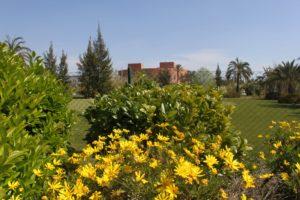 campus-elche-exteriores