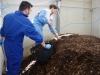 09-05-16-tesis compostaje biofertilizante4