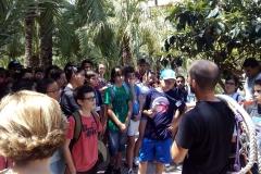 31-07-15-aula junior