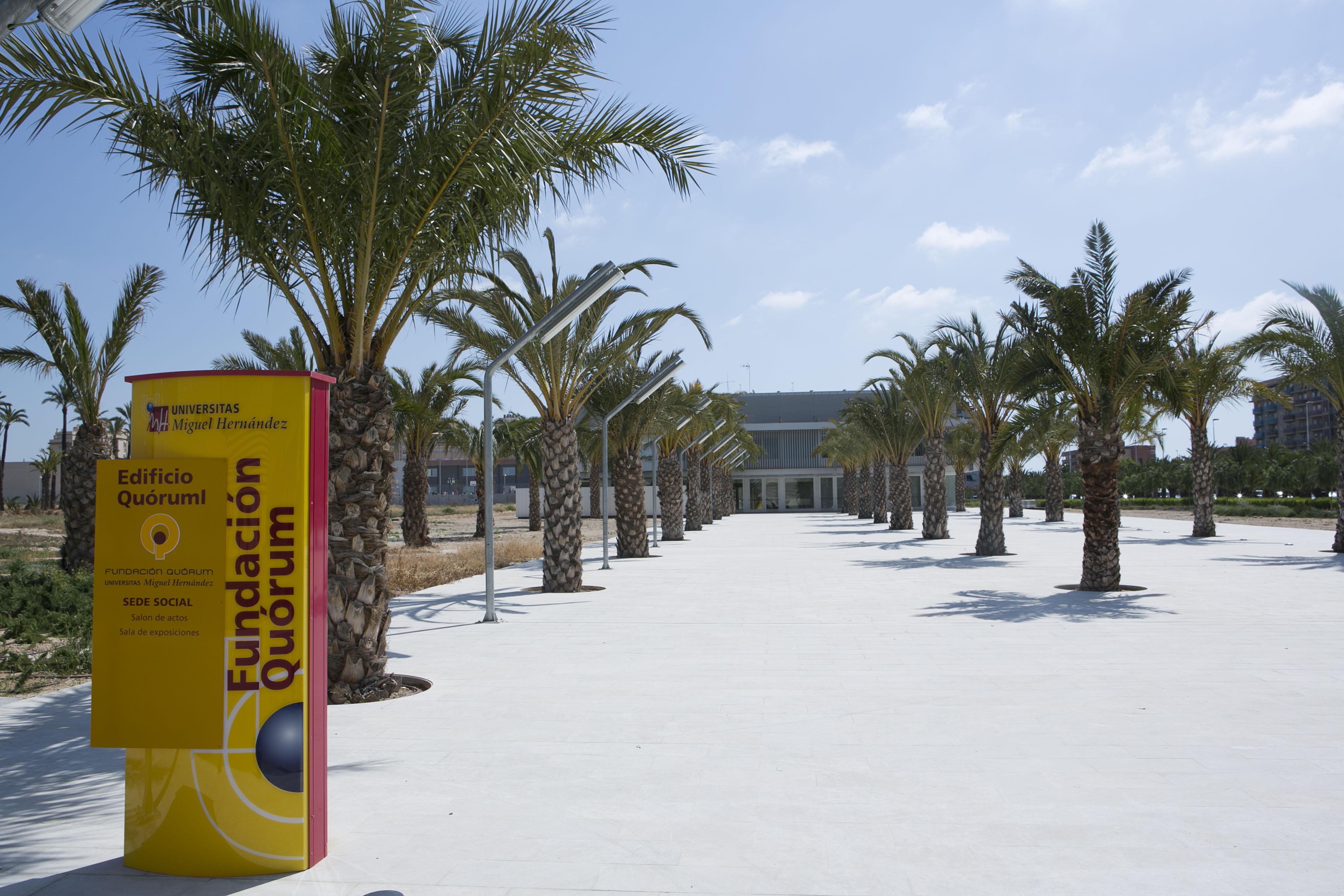 Campus-Elche-exteriores_K8B2132
