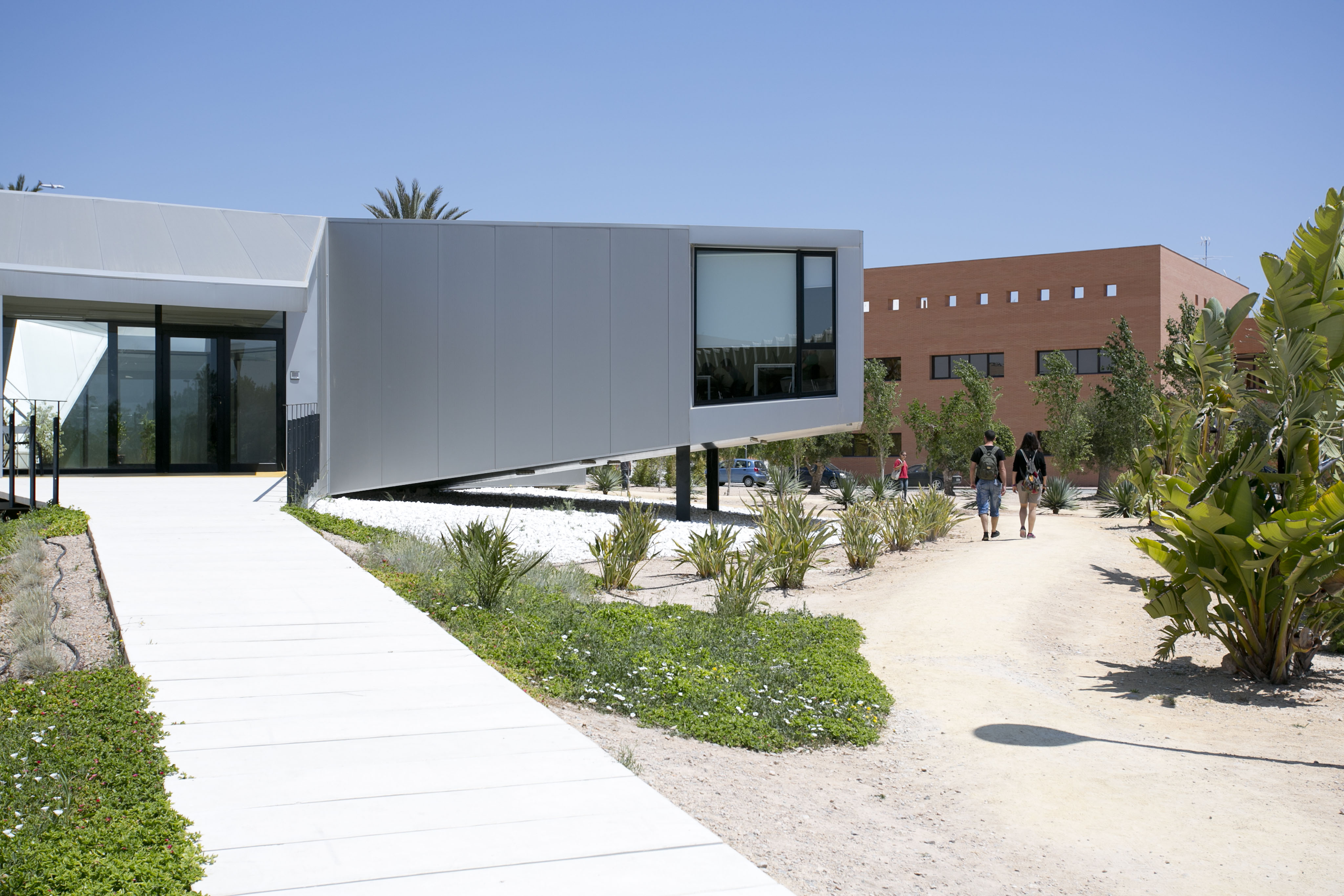Campus-Elche-exteriores_K8B2457