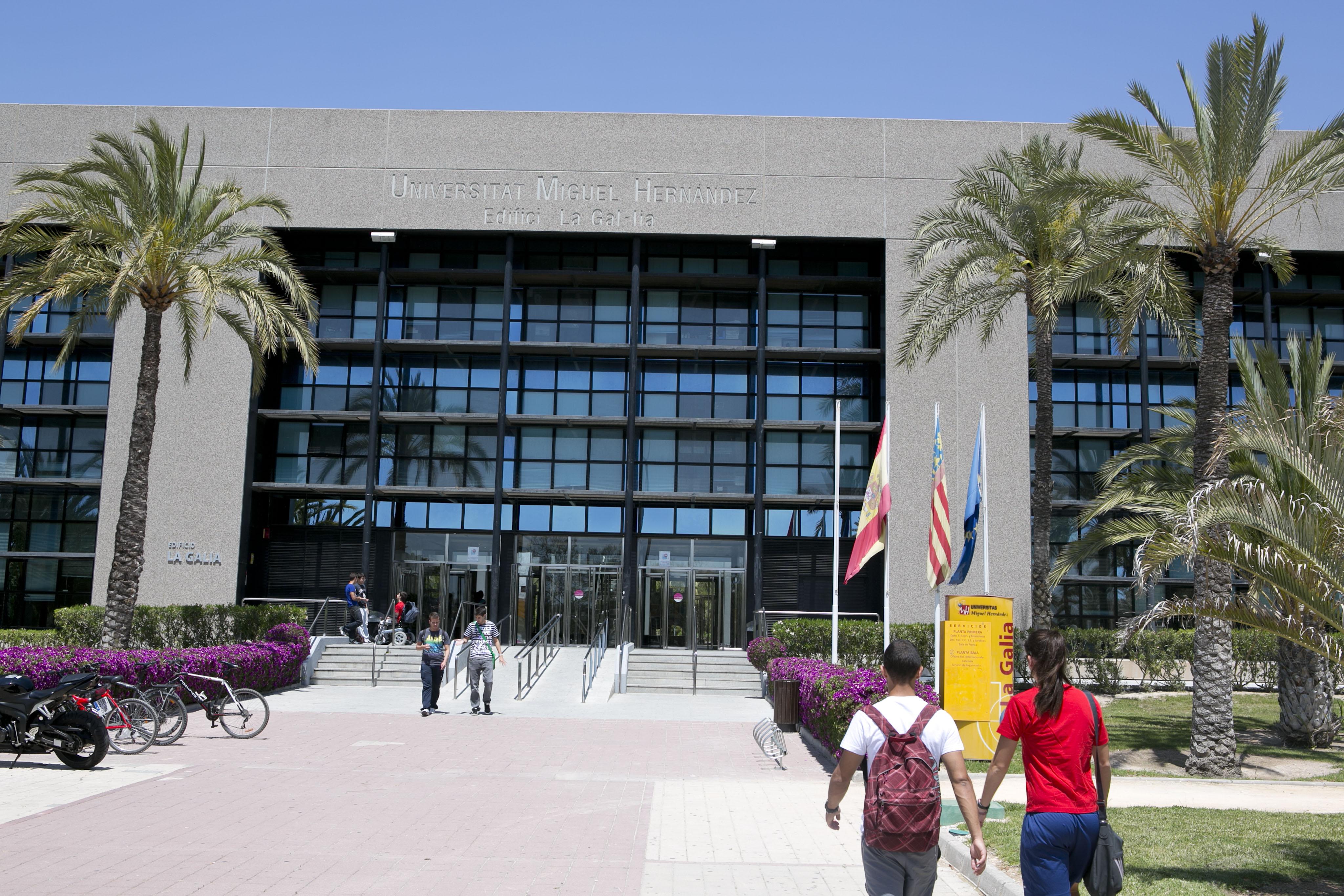 Campus-Elche-exteriores_K8B2501
